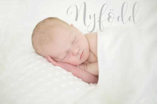 Fotograf i Täby Stockholm som brinner för nyföddfoto